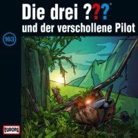 163und-der-verschollene-Pilot-B00D4FB71O